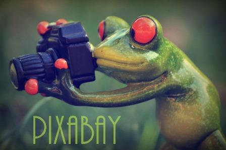 pixabay-868437_960_720