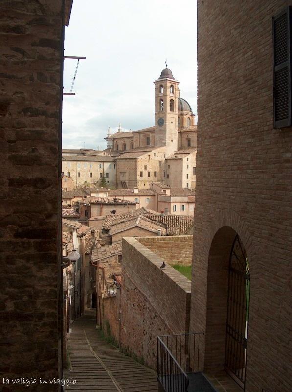Urbino11