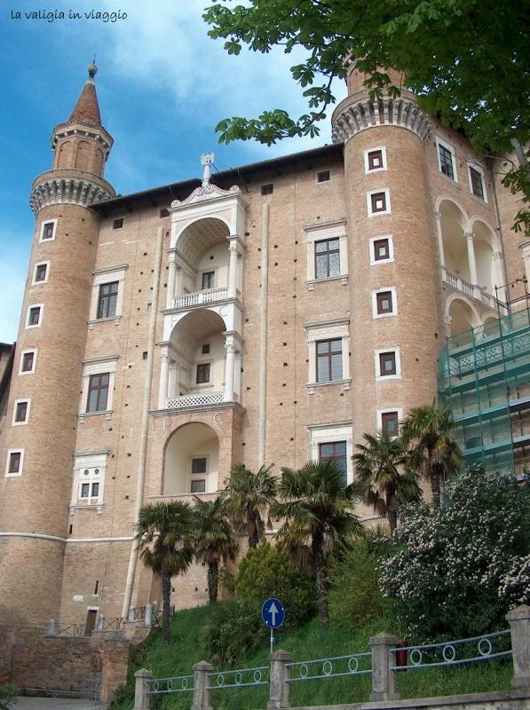 Urbino13