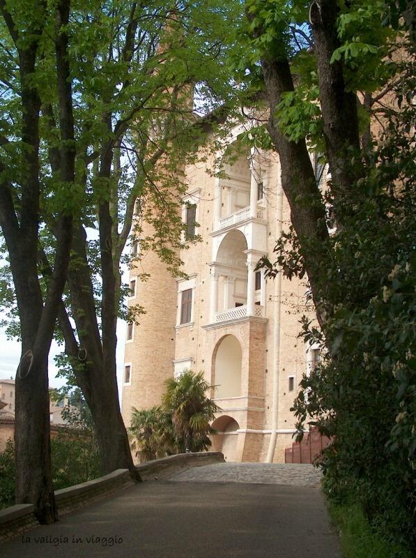 Urbino15