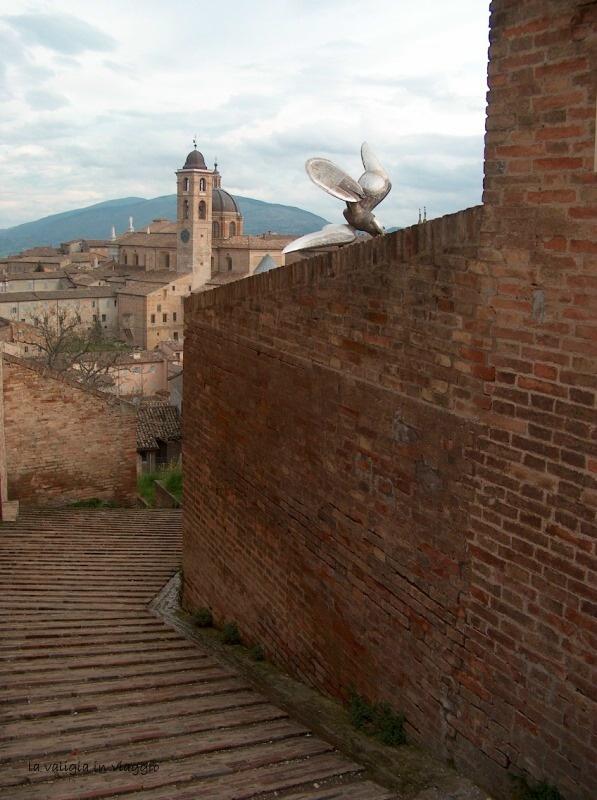 Urbino7