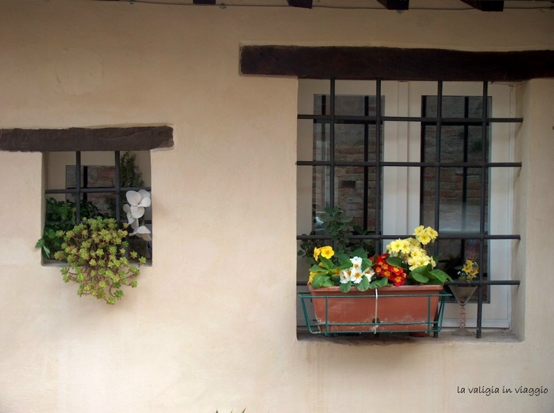 Urbino9
