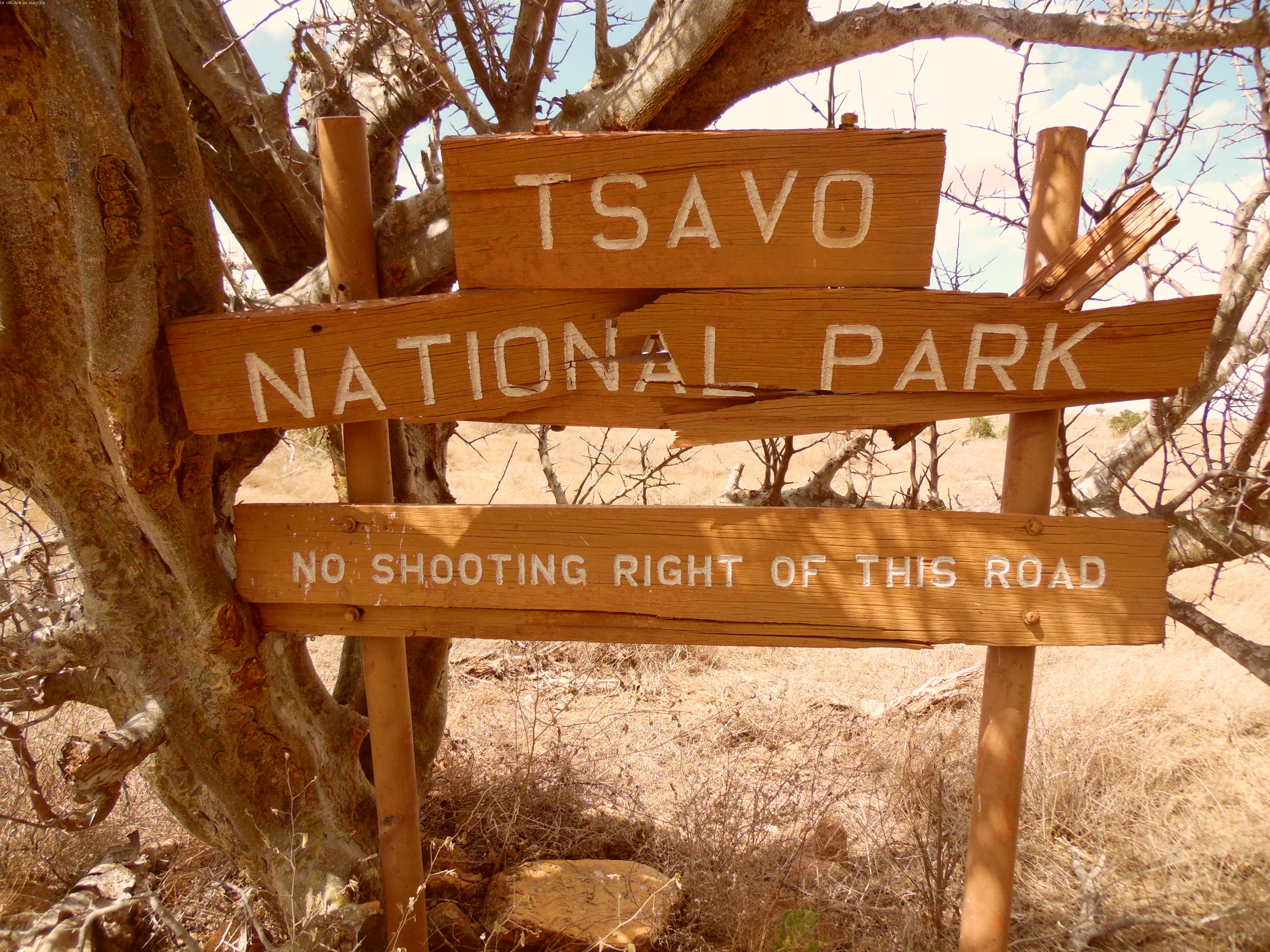 Safari in Kenya, nello Tsavo National Park