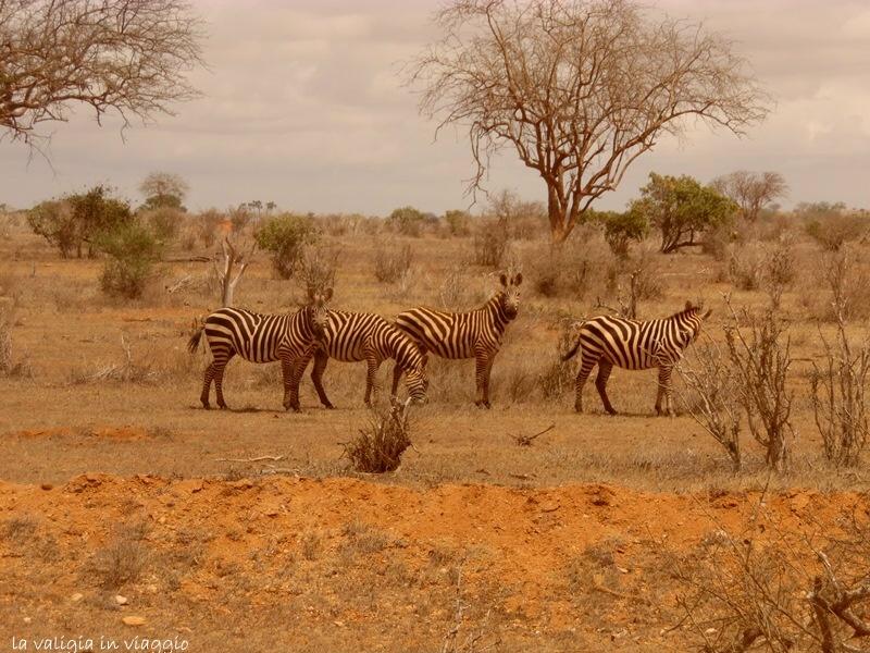 Kenya.14