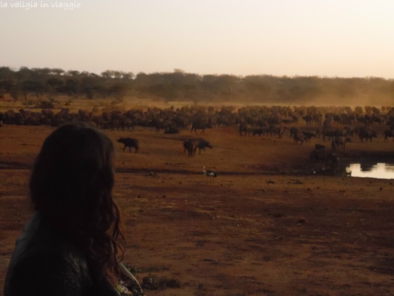 Kenya.16
