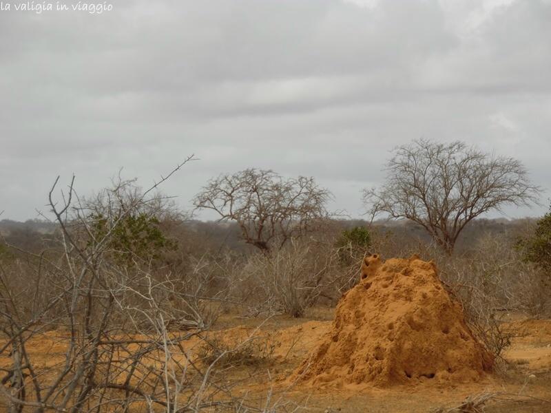 Kenya.4